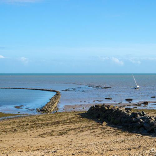 Noirmoutier  © Richard MURY